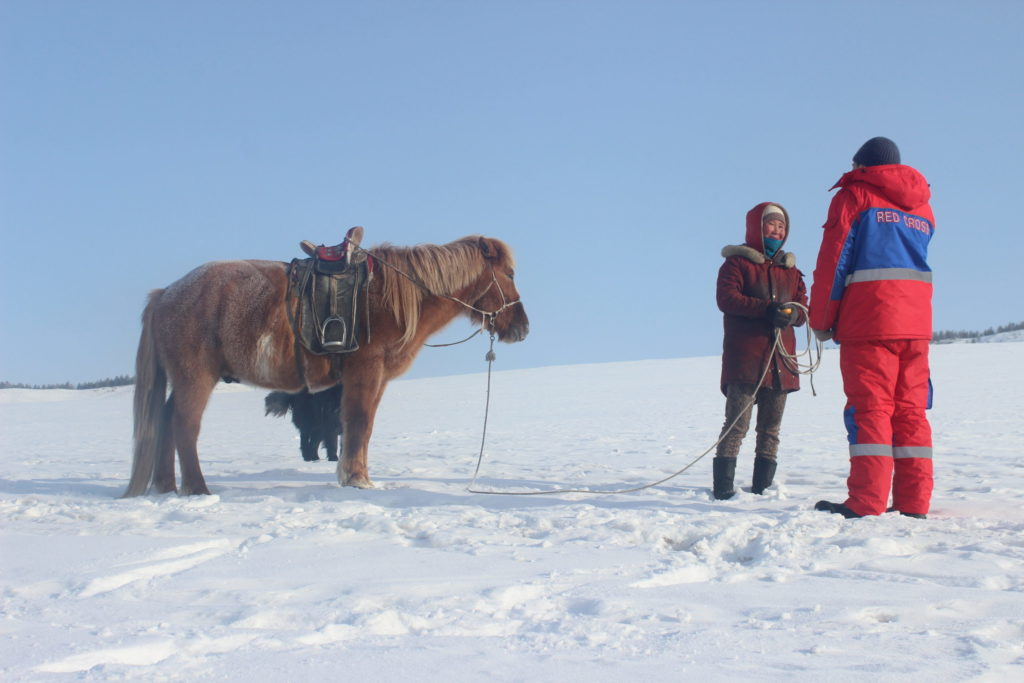 The Monolian Red Cross Society staff is conducting dzud assessments in the field - Foto by IFRC